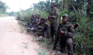 FARD, Groupes armés