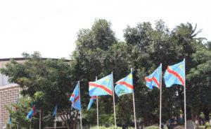 Passeport, Diaspora congolaise, Partis politiques