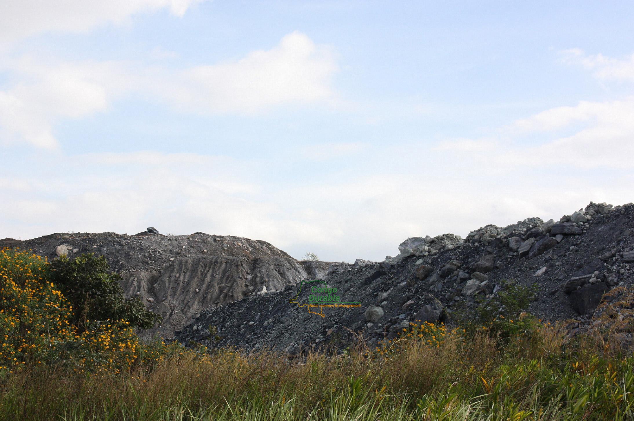 Mines, Code minier, Développement durable, Cobalt